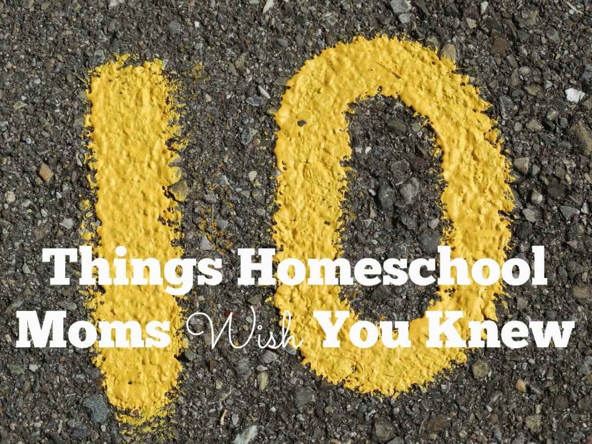 10 Things Homeschool Moms Wish You Knew