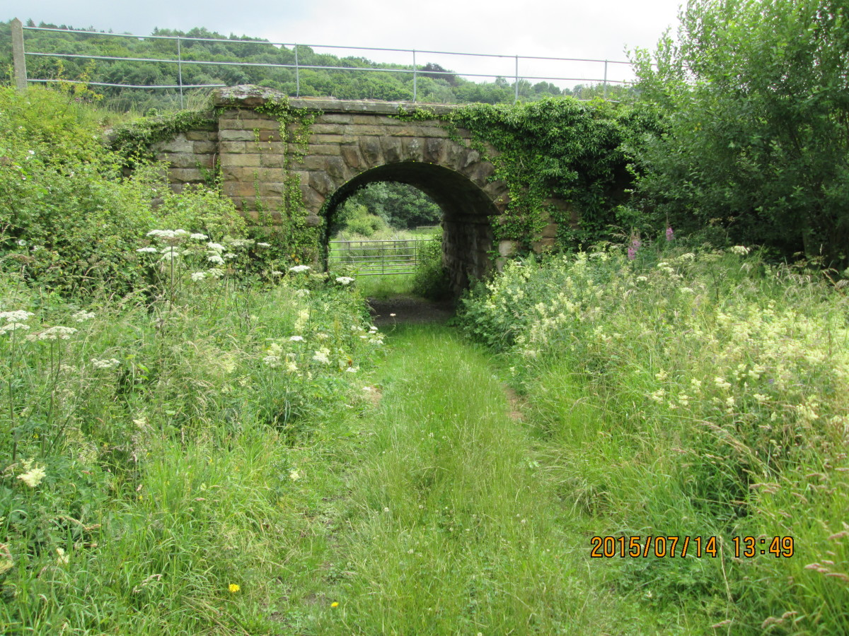Along the route of the North Yorkshire Moors Railway near Grosmont, this cattle creep nestles amid overgrown banks of weeds and bushes
