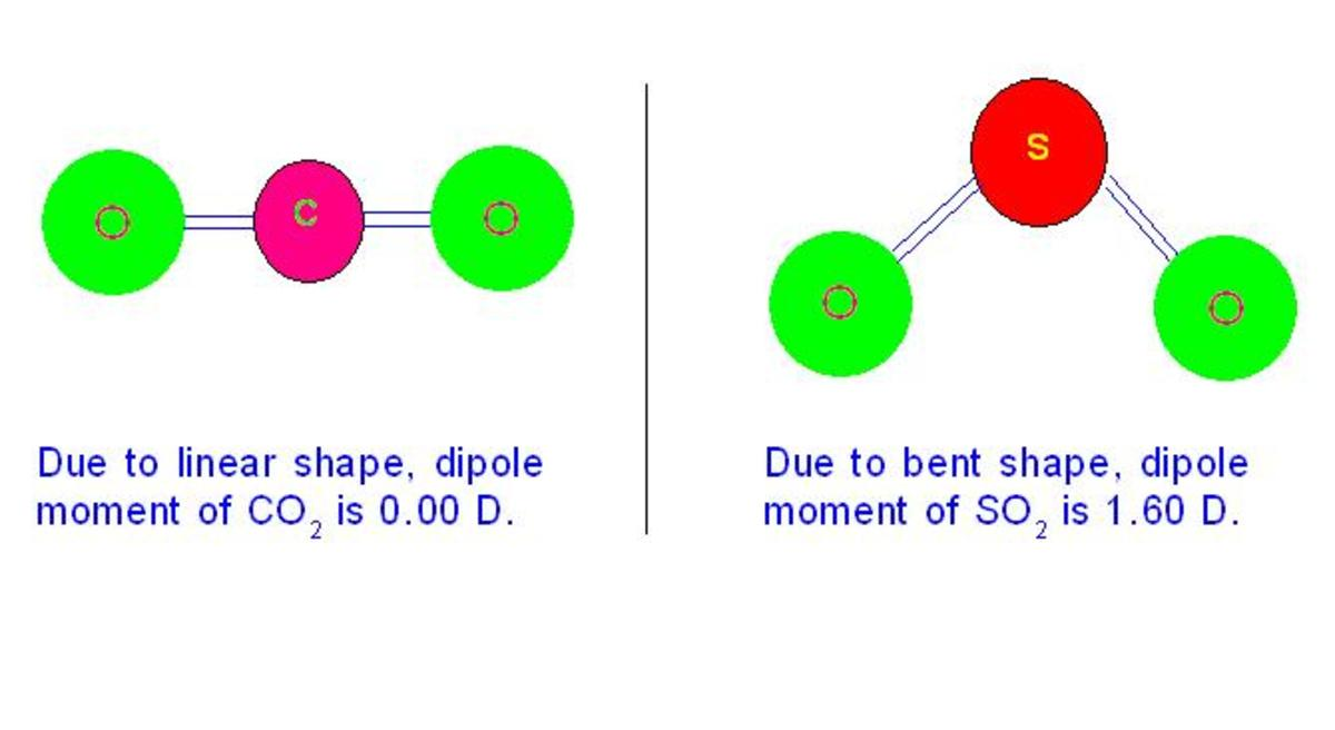 In carbon dioxide, due to its linear shape, individual dipole moments of two C=O bonds cancels each other giving net value of zero. But due to bent shape sulphur dioxide shows dipole moment.