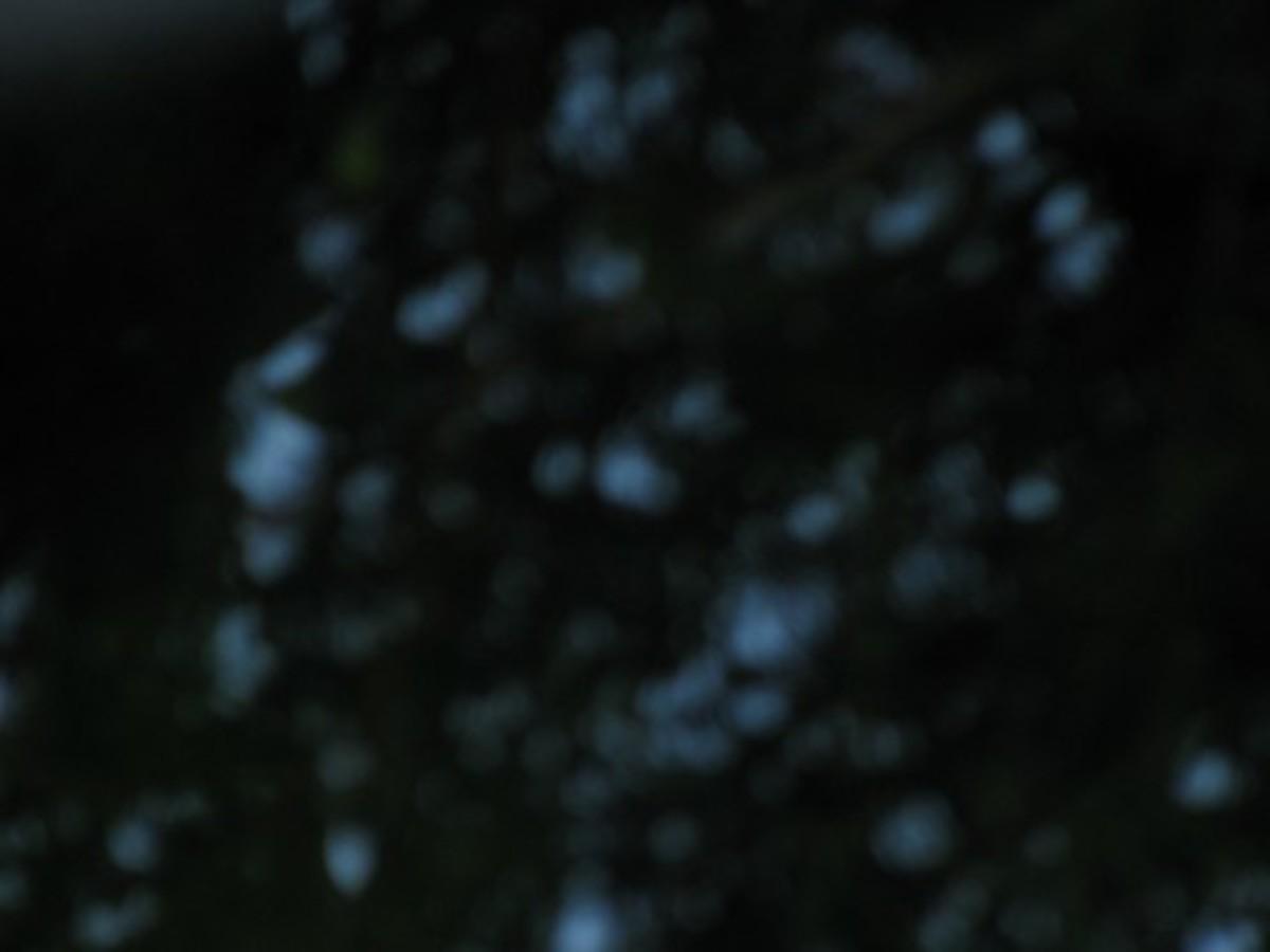 Blurred Points in the Dark