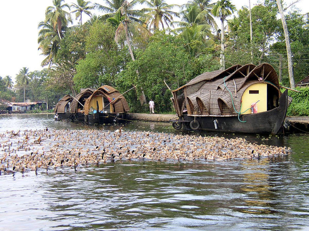 Kerala has attractive environment