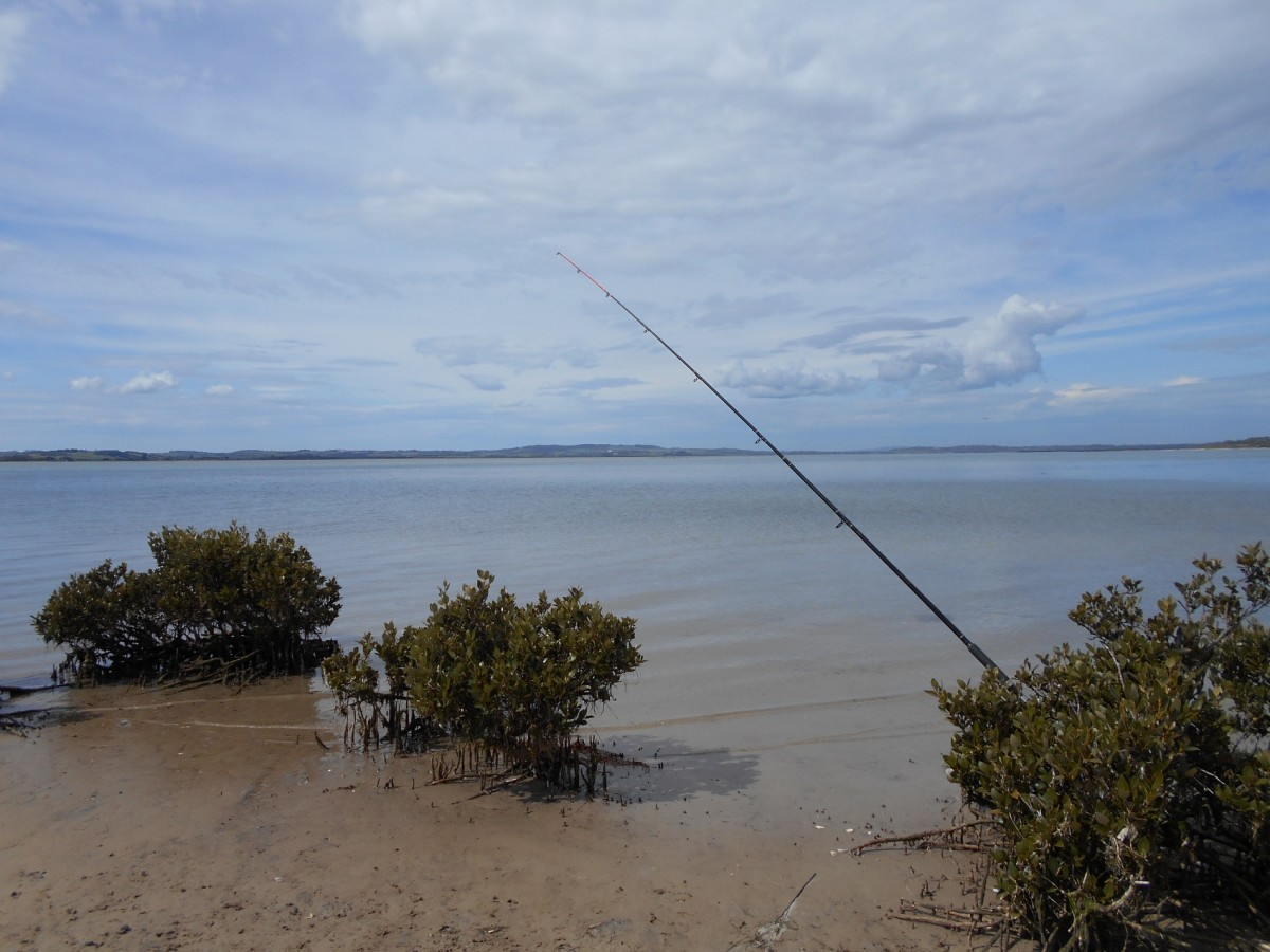 The waters in the Anderson Inlet in Venus Bay is really calm and quiet. The town of Inverloch is in the distance.