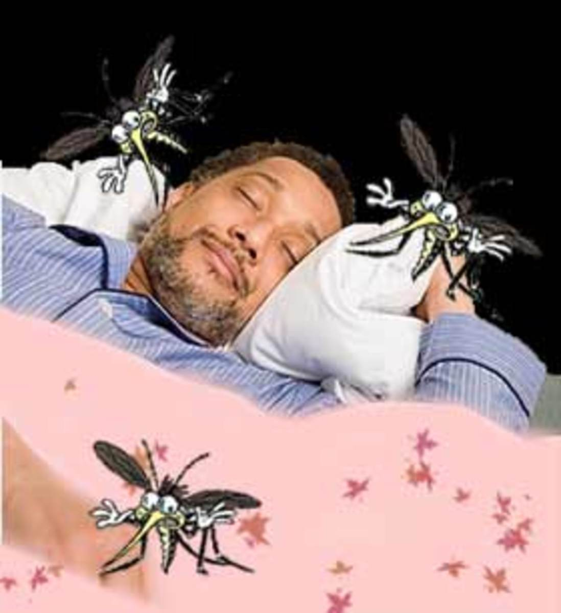 why-mosquitoes-buzz-in-peoples-ears