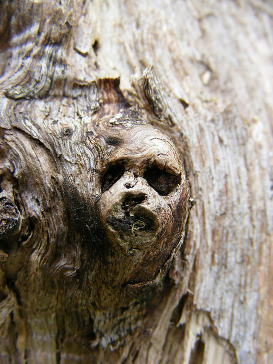 Goblins appear in various forms in mythologies throughout the world