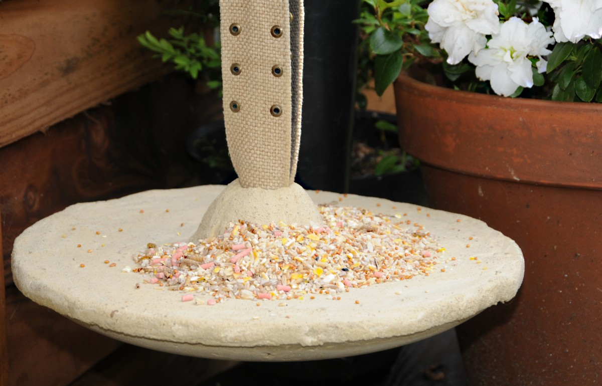 Detail of the completed hanging bird feeder