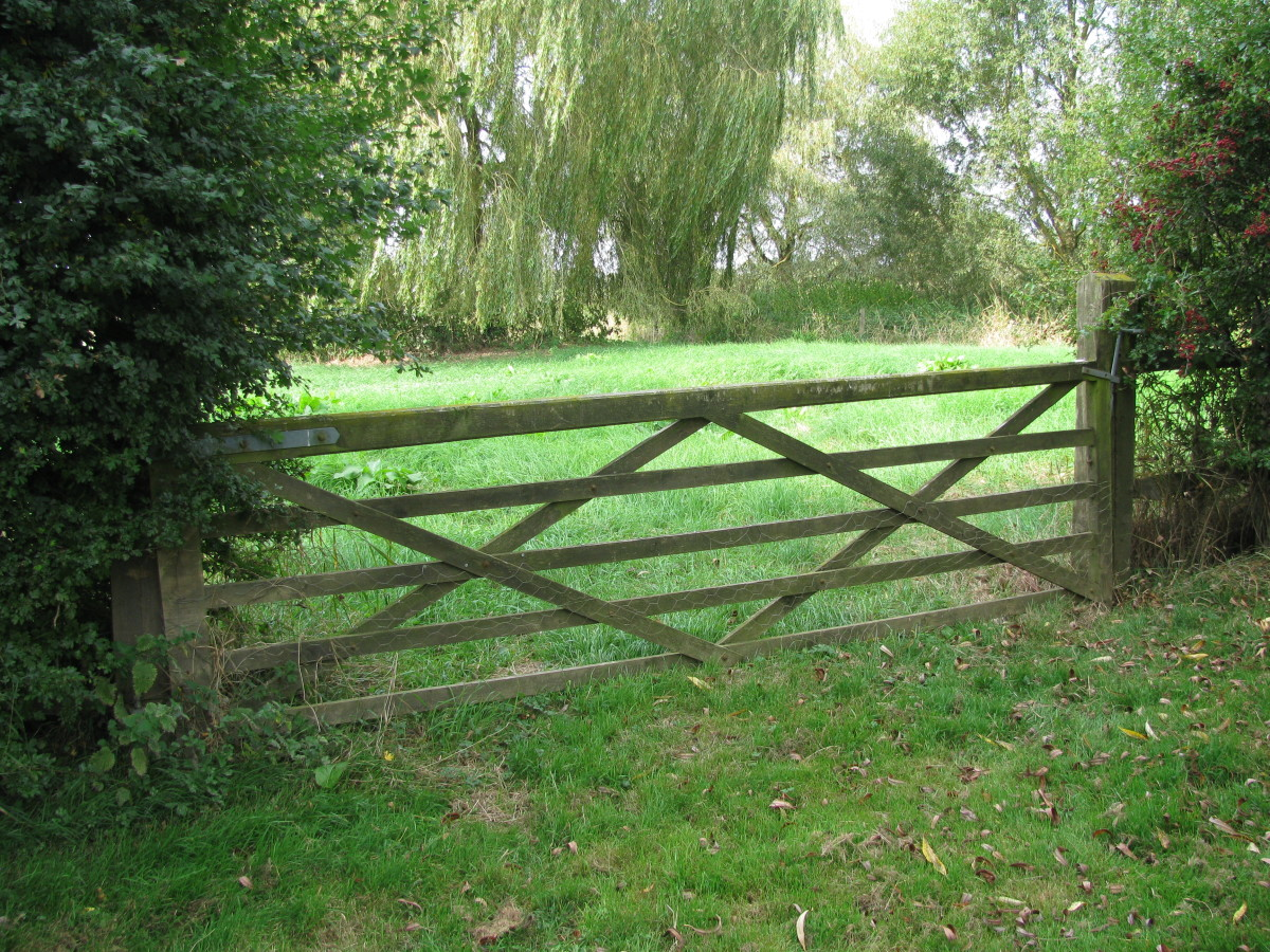 Will you go beyond the gate?
