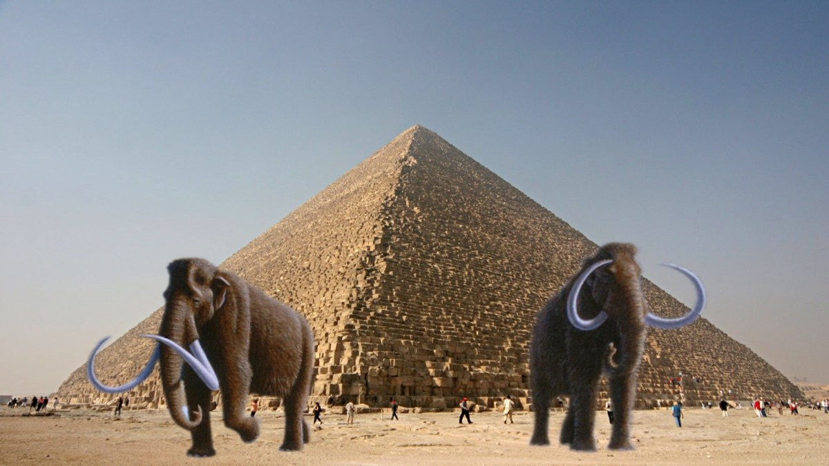 Wooly Mammoths and Pyramids