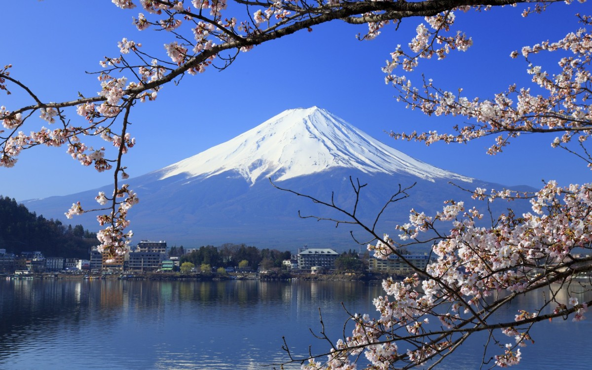 what-westerners-say-about-living-in-japan