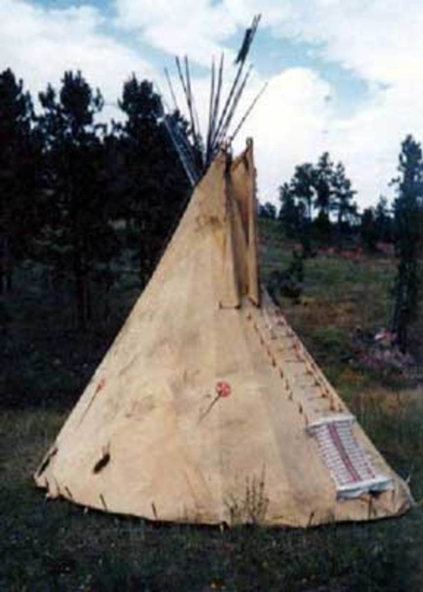 It takes 21 hides to make a full sized tipi (teepee)