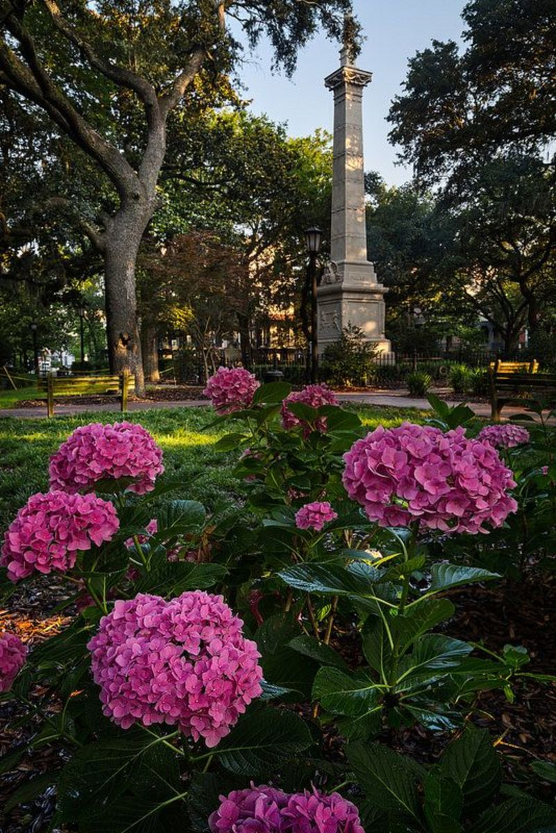 Casimir Pulaski Memorial, Monterey Square, Savannah
