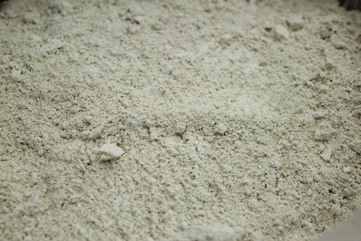 Food grade diatomaceous earth is made of microscopic freshwater algae called diatoms.
