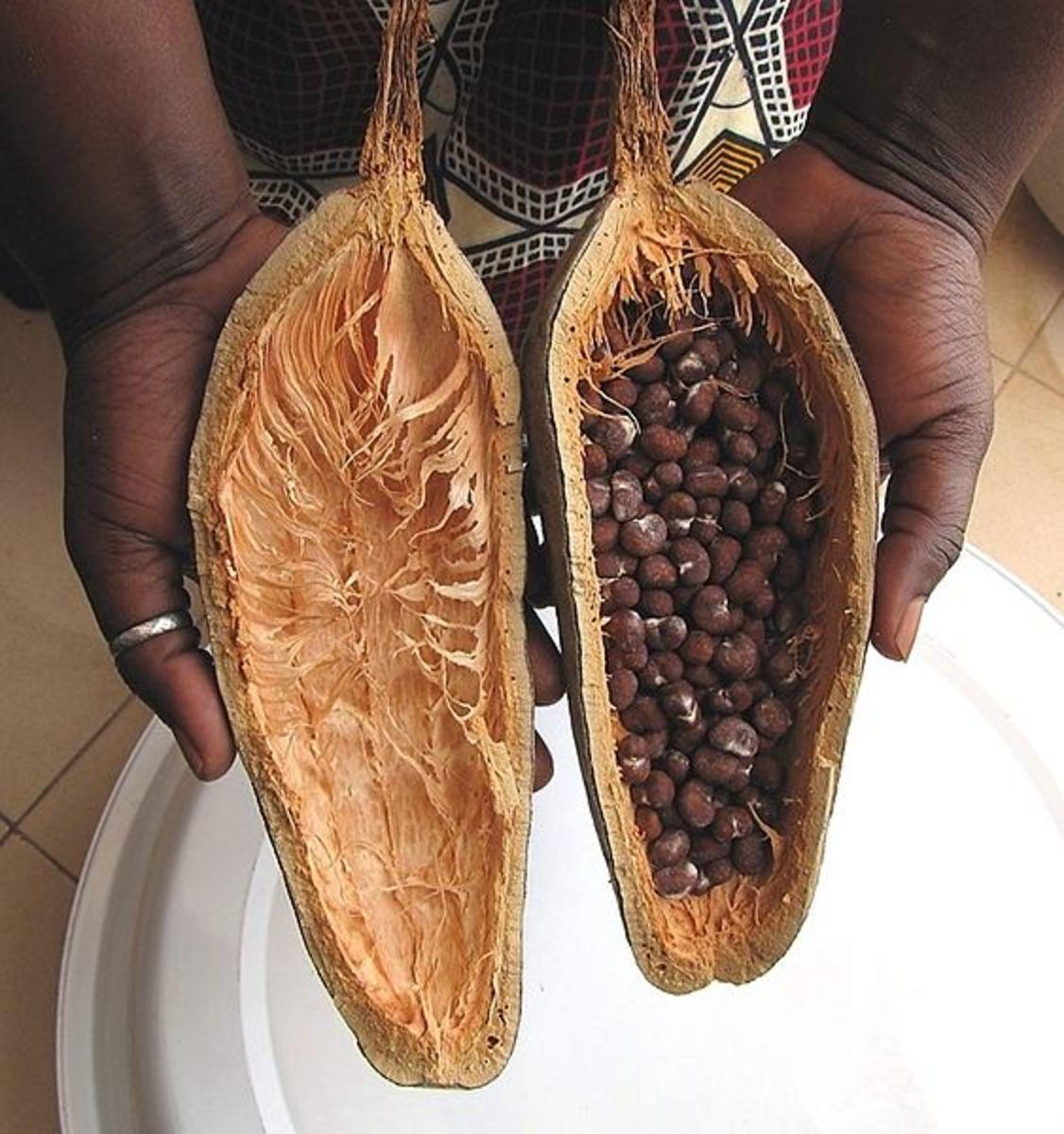 Baobab Fruit with Seeds