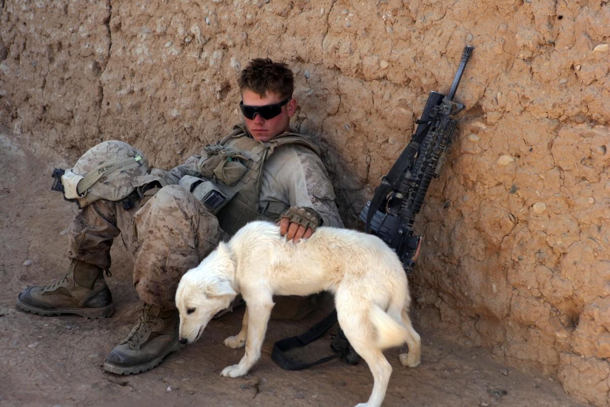 U.S. Marine pets dog in southern Marjah