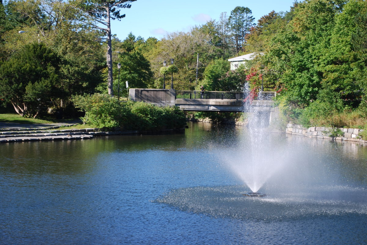The Duck Pond, looking west past the fountain.
