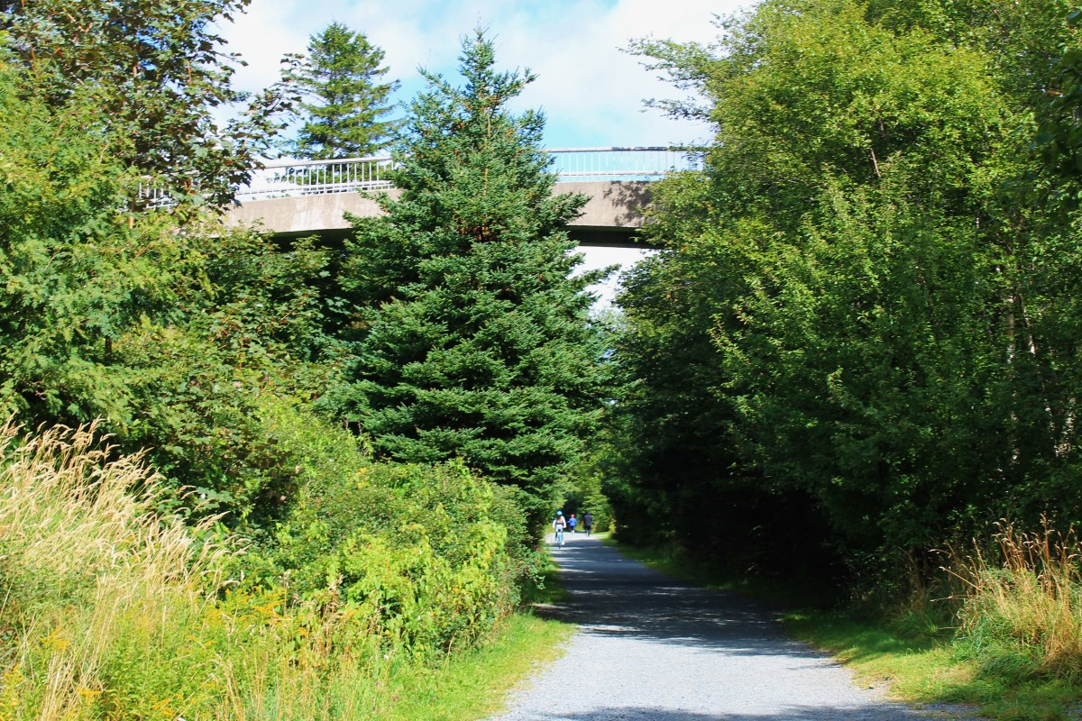 "This cantilevered bridge is a pedestrian overpass which crosses over what was once the railroad track but is now a walking trail, and part of the ""NL TRailway""."