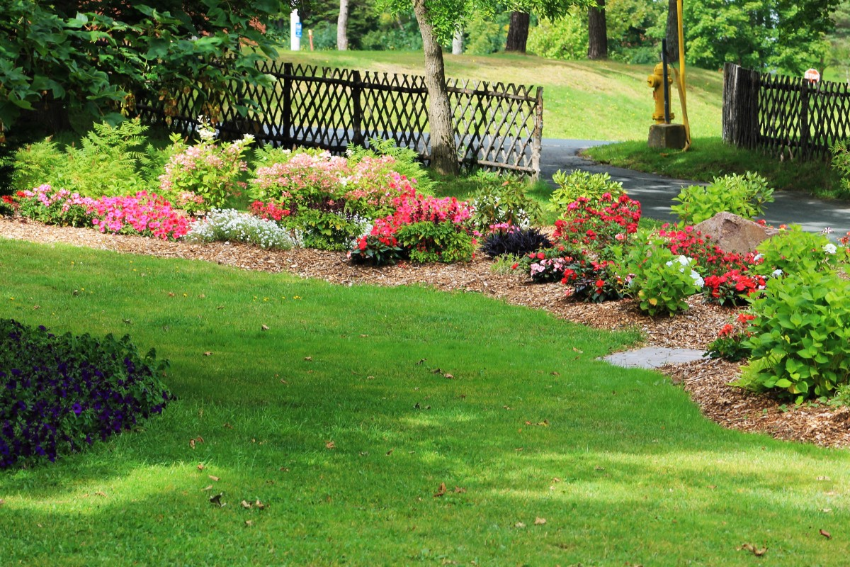 One of the many beautiful flower beds that can be found all over Bowring Park.