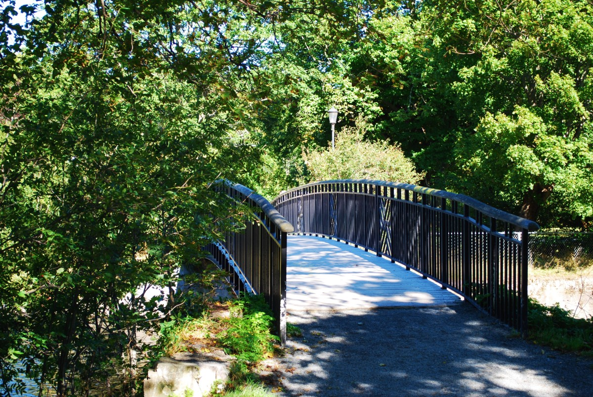 This beautiful rustic bridge crosses the Waterford River at the east end of the Duck Pond.