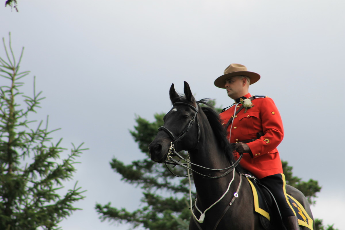 A mounted RCMP Officer at the park for the wedding of a fellow officer.