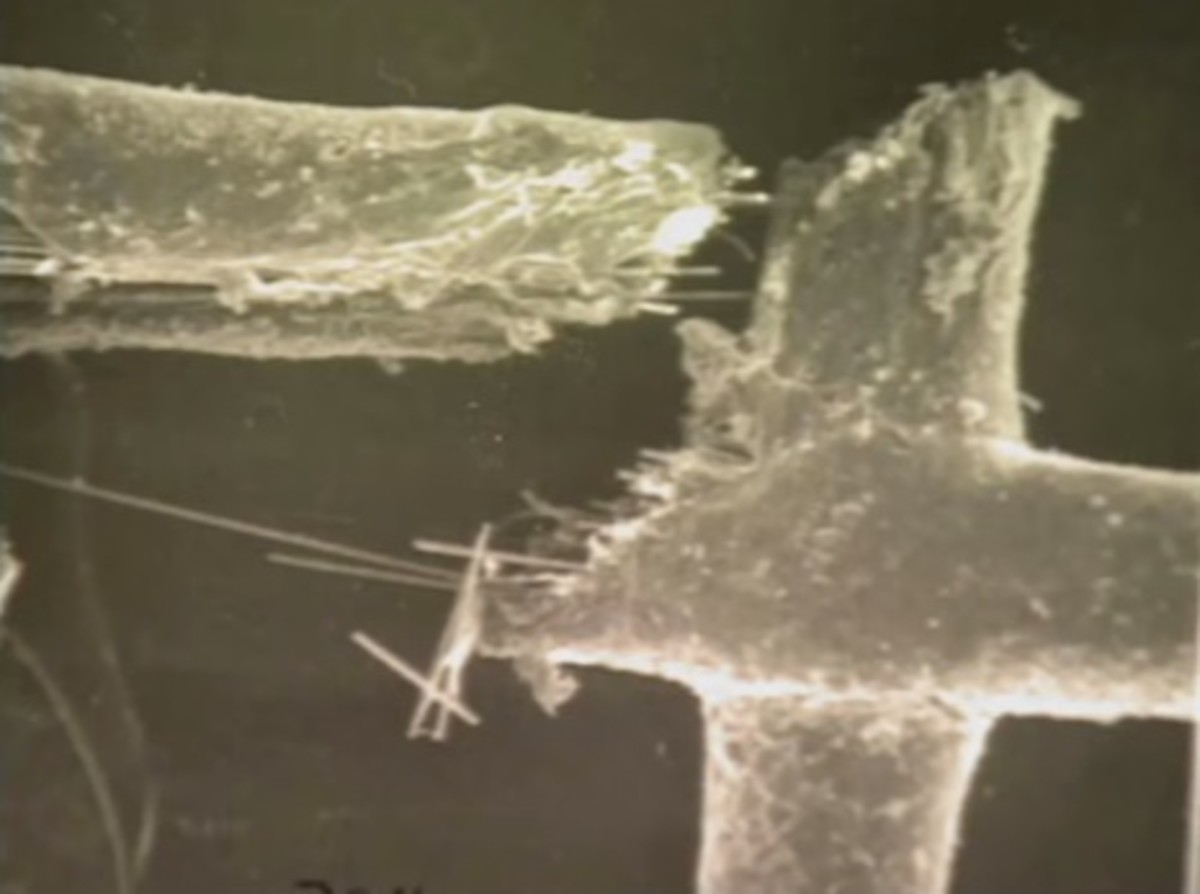 Microscopic analysis matched the fibers from the serrated knife to the garage window screen.