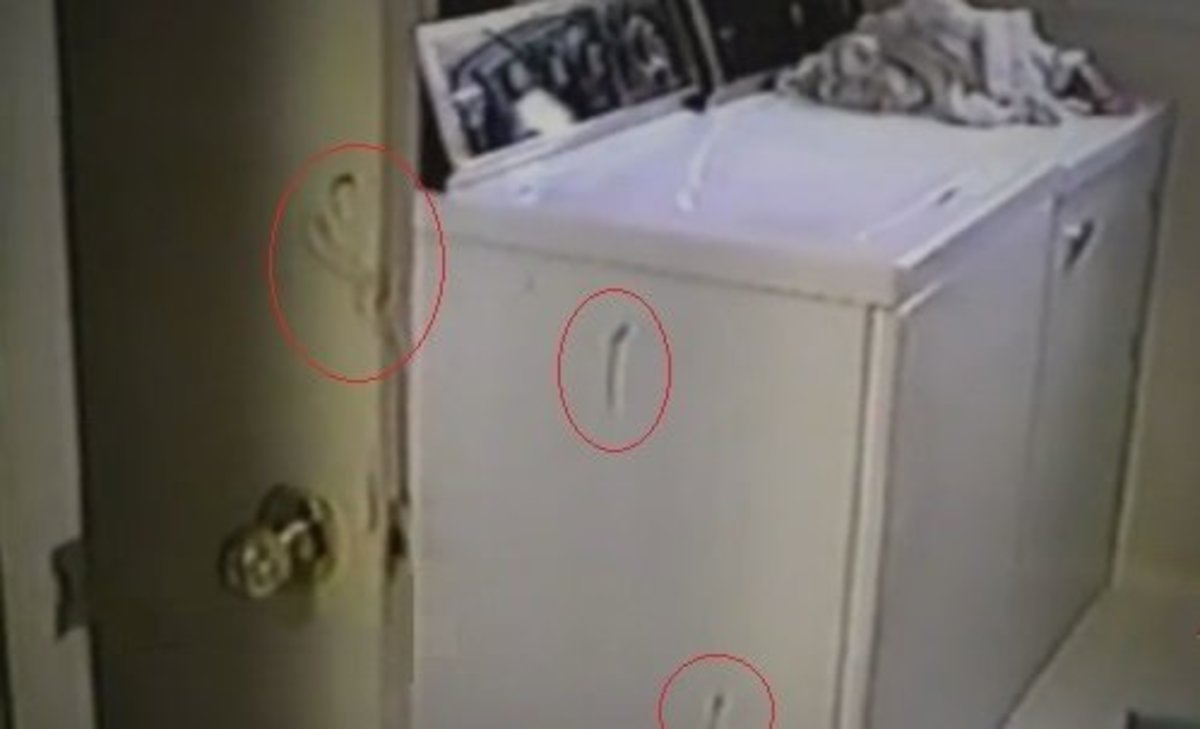 Blood on the utility room door and washing machine identified as belonging to Darlie. No other blood was found past this point.