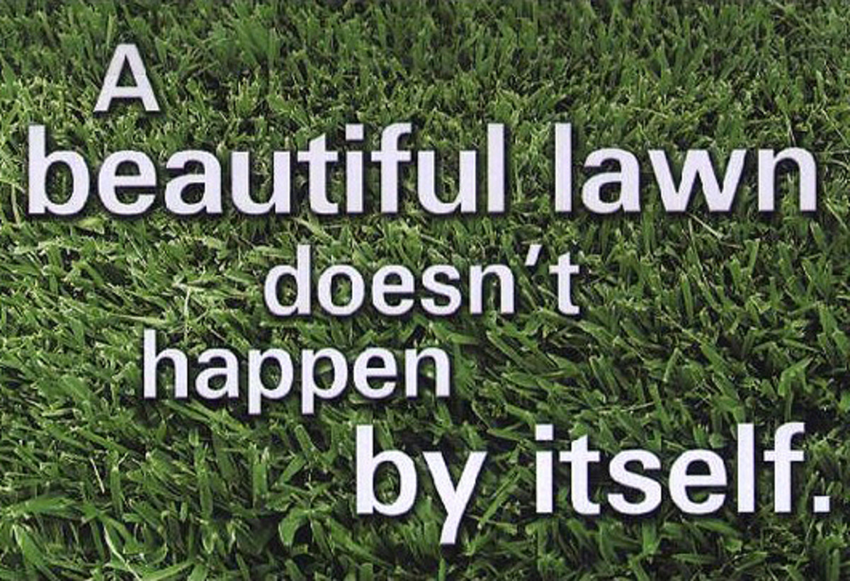 Proper Lawn Care