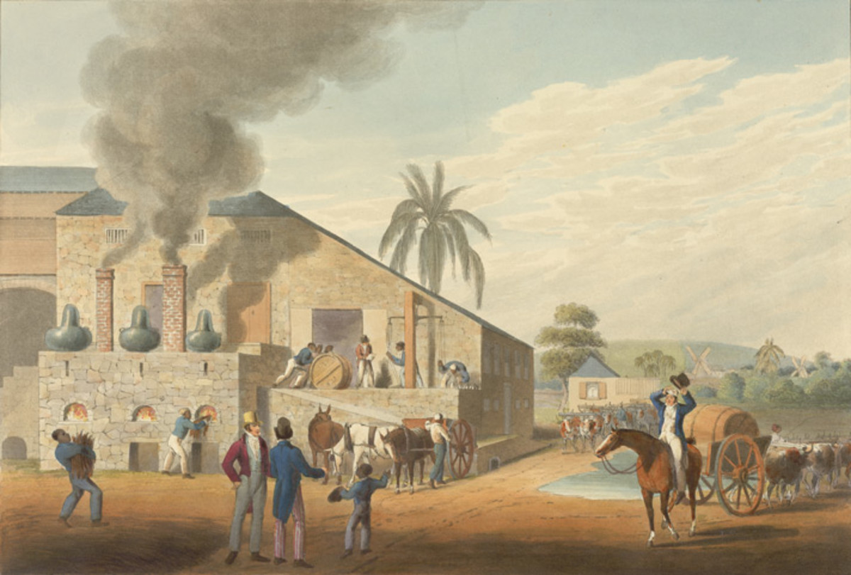Slaves Set to work at the Antigua rum distillery, painting by William Clarke (1800s)