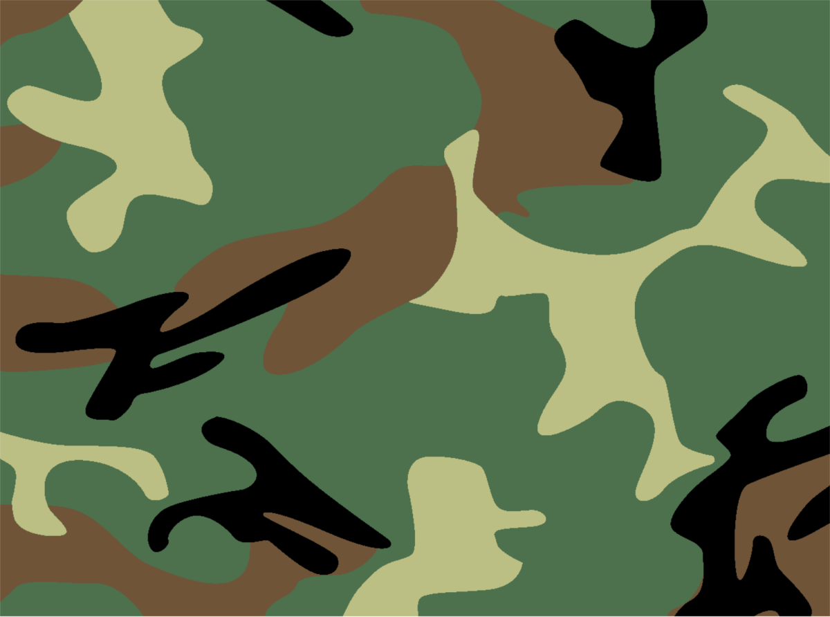 Countries Where Wearing Camouflage Is Illegal