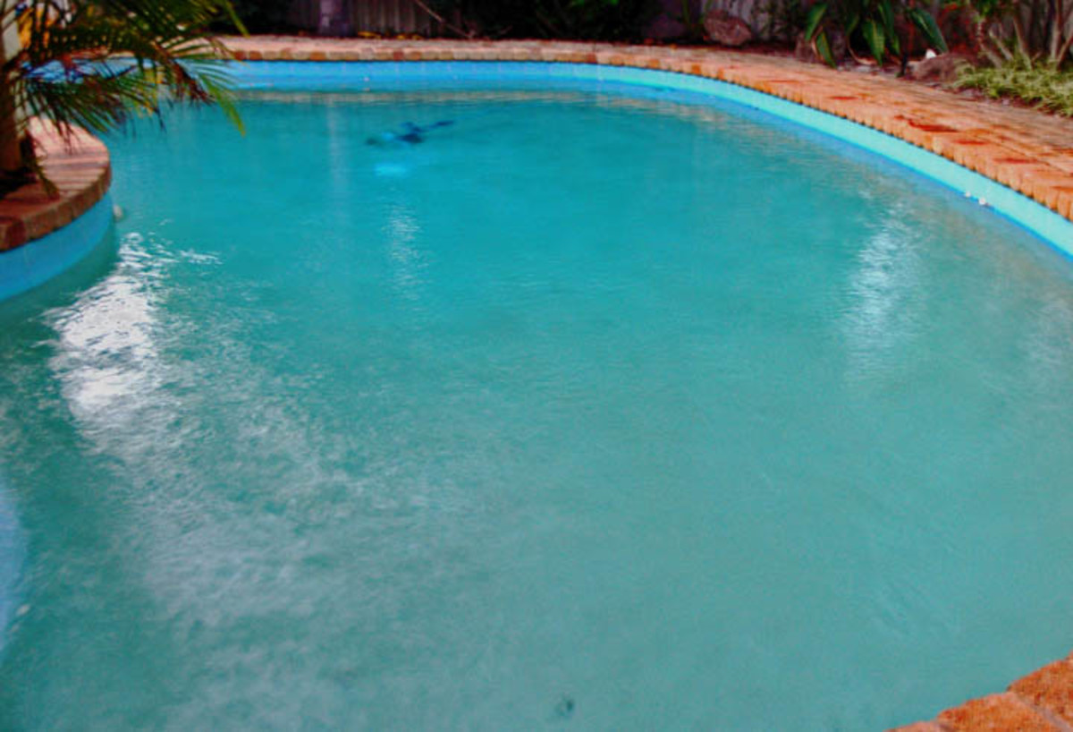 How To Get Rid of Algae In Pool Without
