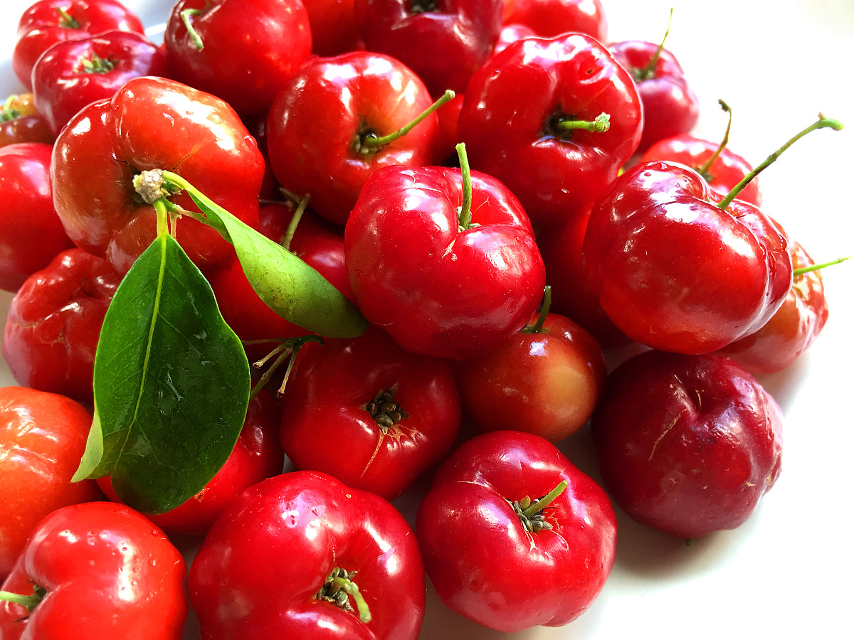 Luscious, mouthwatering acerola cherries!