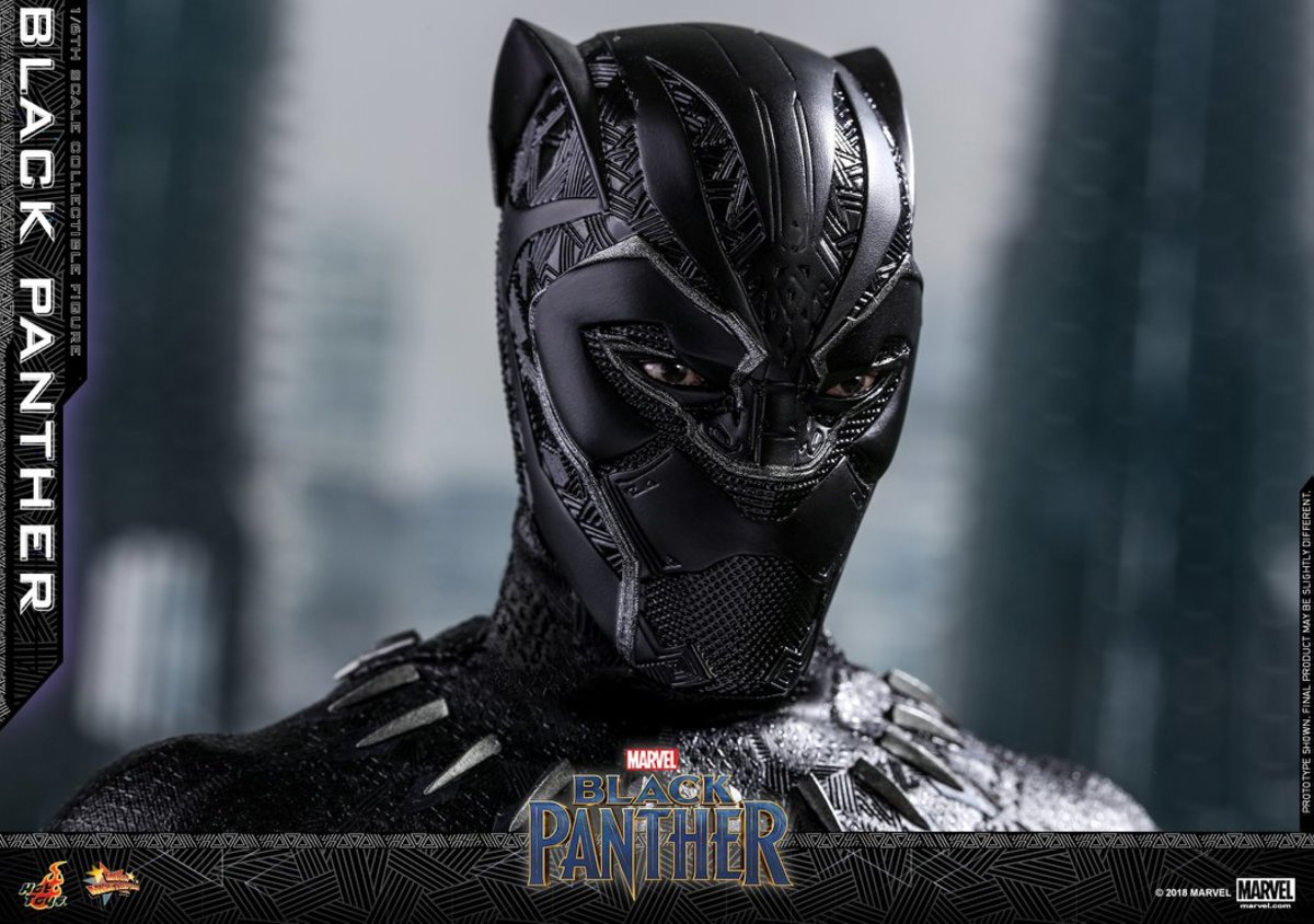 Blank Panther Movie Review:  Problems With The Panther