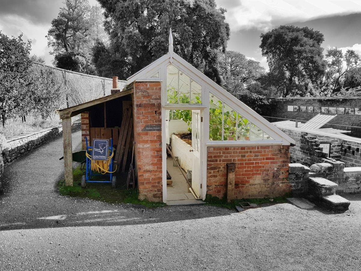 A lean to attached to a storage shed or is the storage shed attached to the lean to?