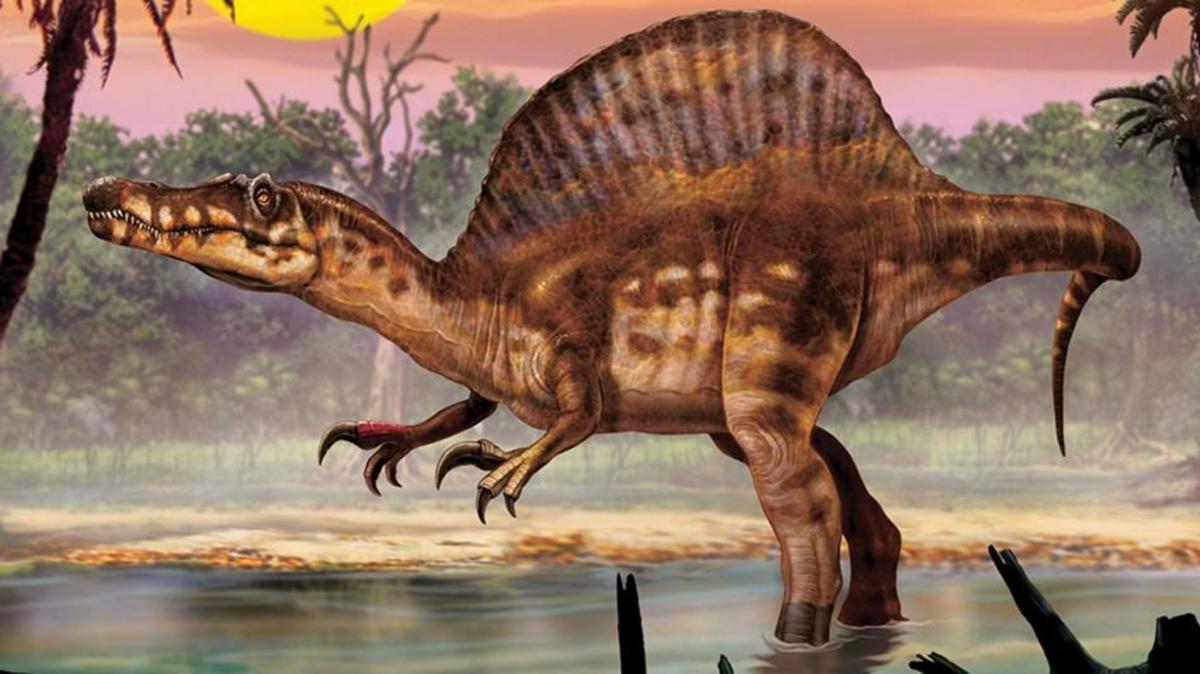 Image of a Spinosaurus