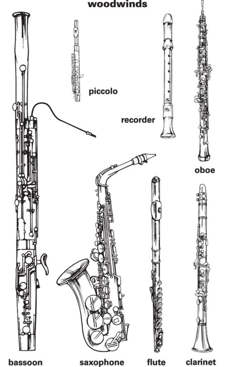 School Band Instruments Names: How To Choose!
