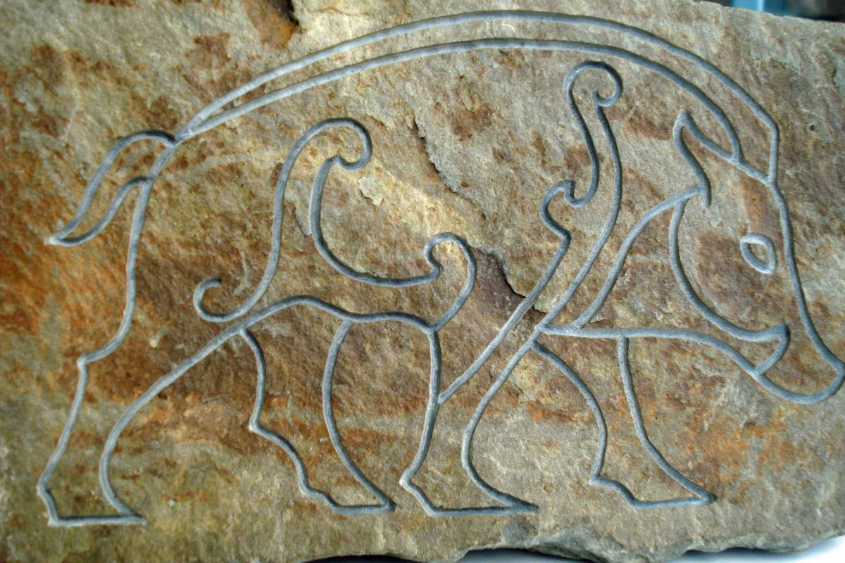 Not everyone can boast of having a garden stone that depicts one of the Celts' revered animals - and not only the Celts but the Norsemen too, revered the boar for his tenacity in defending what was his