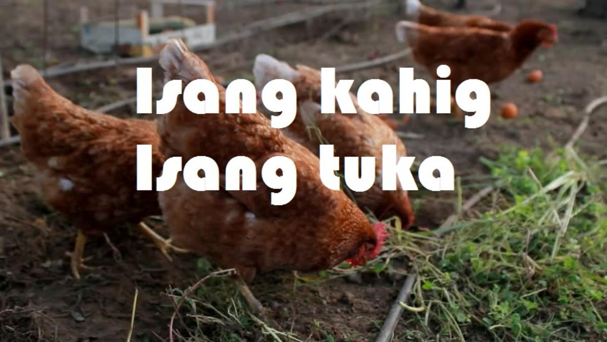 filipino-idioms