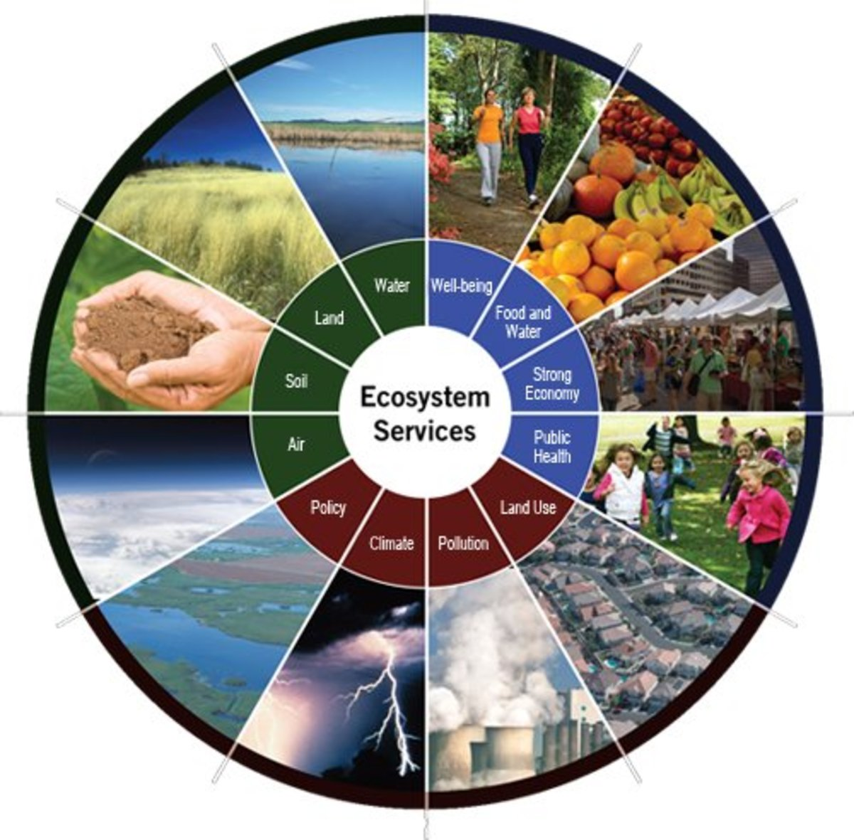 Ecosystem Services and Economic Values