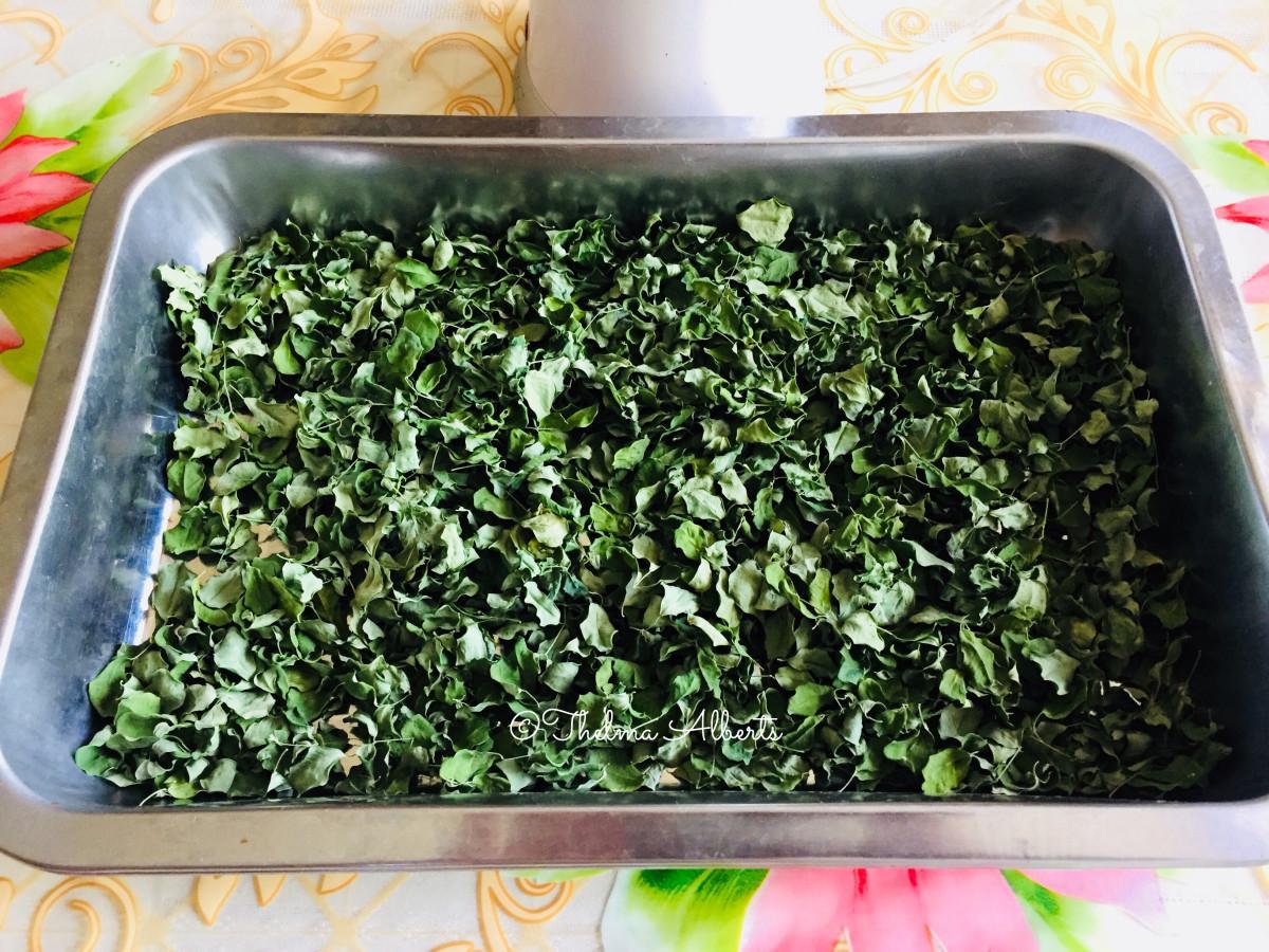 Moringa Oleifera / Malunggay / Miracle Tree Leaves, dried.