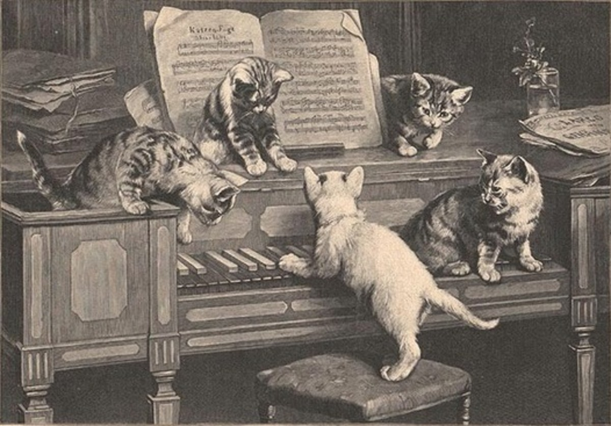 10 Stories About Composers and Cats