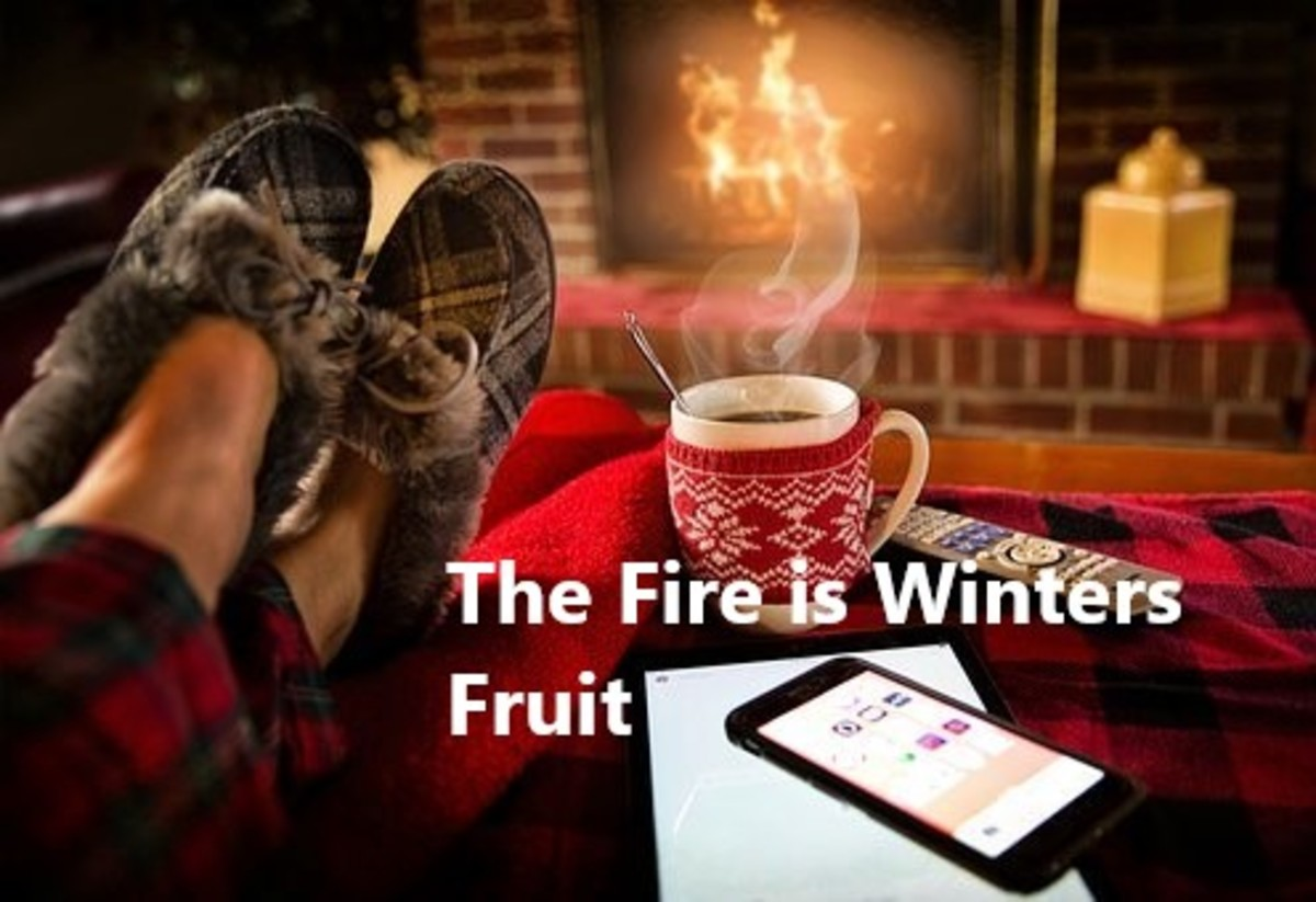 Winter Idioms and Adages