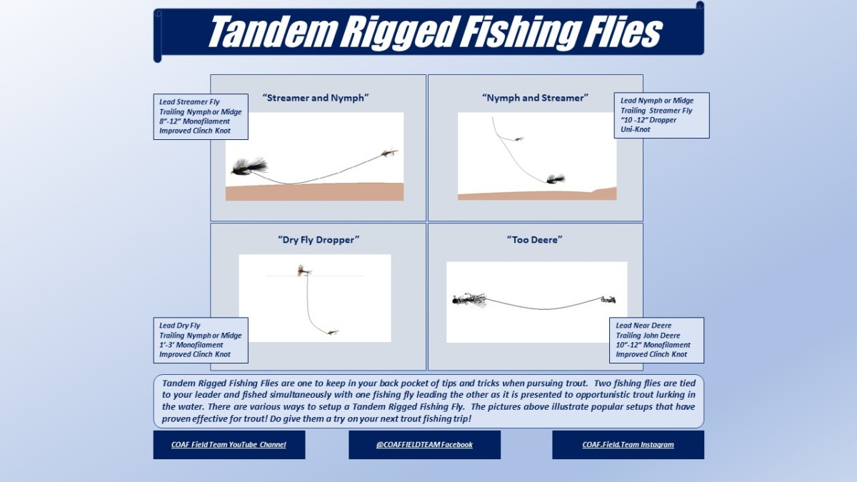 Tandem Rigged Fishing Flies Infographic