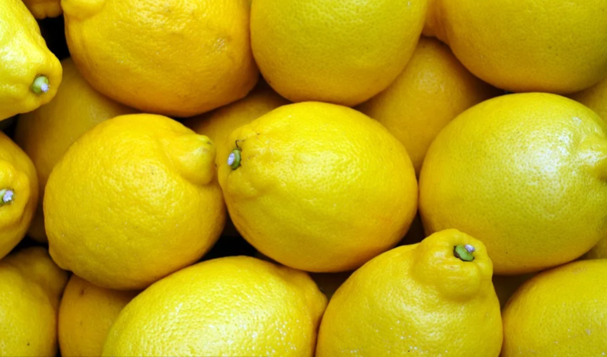 lemons-have-many-health-benefits