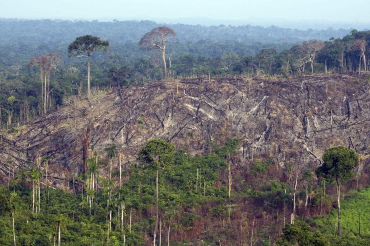 Depletion of Resources