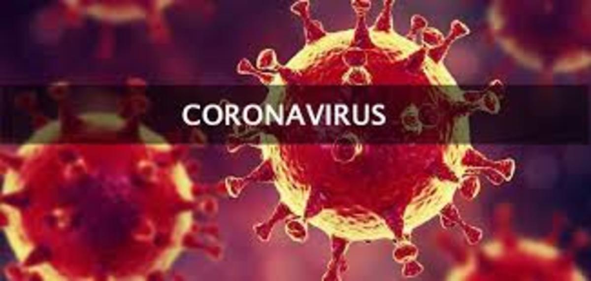 The Chinese Virus -Novel Coronavirus (2019-Ncov)