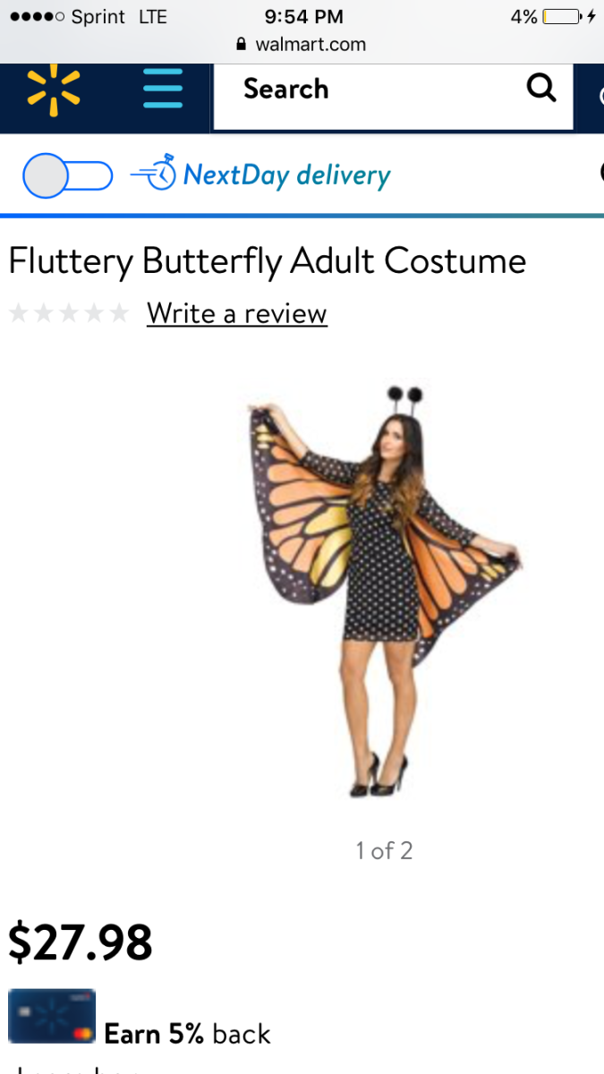 Pretty Butterfly Costume