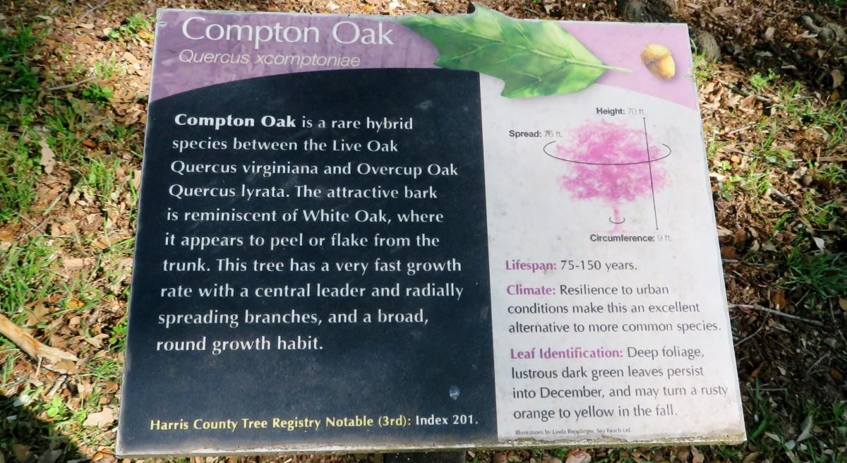 Compton Oak Sign