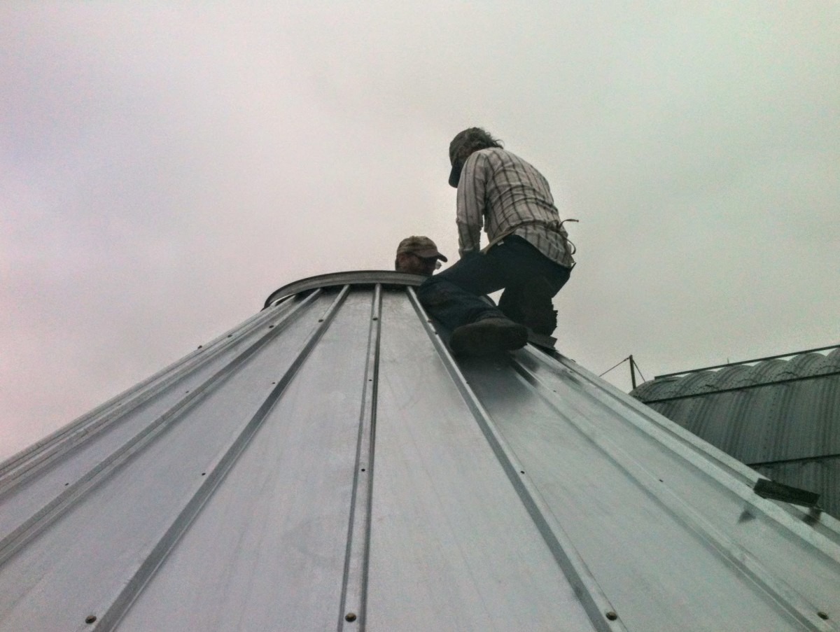 One hole per roof sheet is a good starting point. If your collar doesn't have at least this many holes, add more.