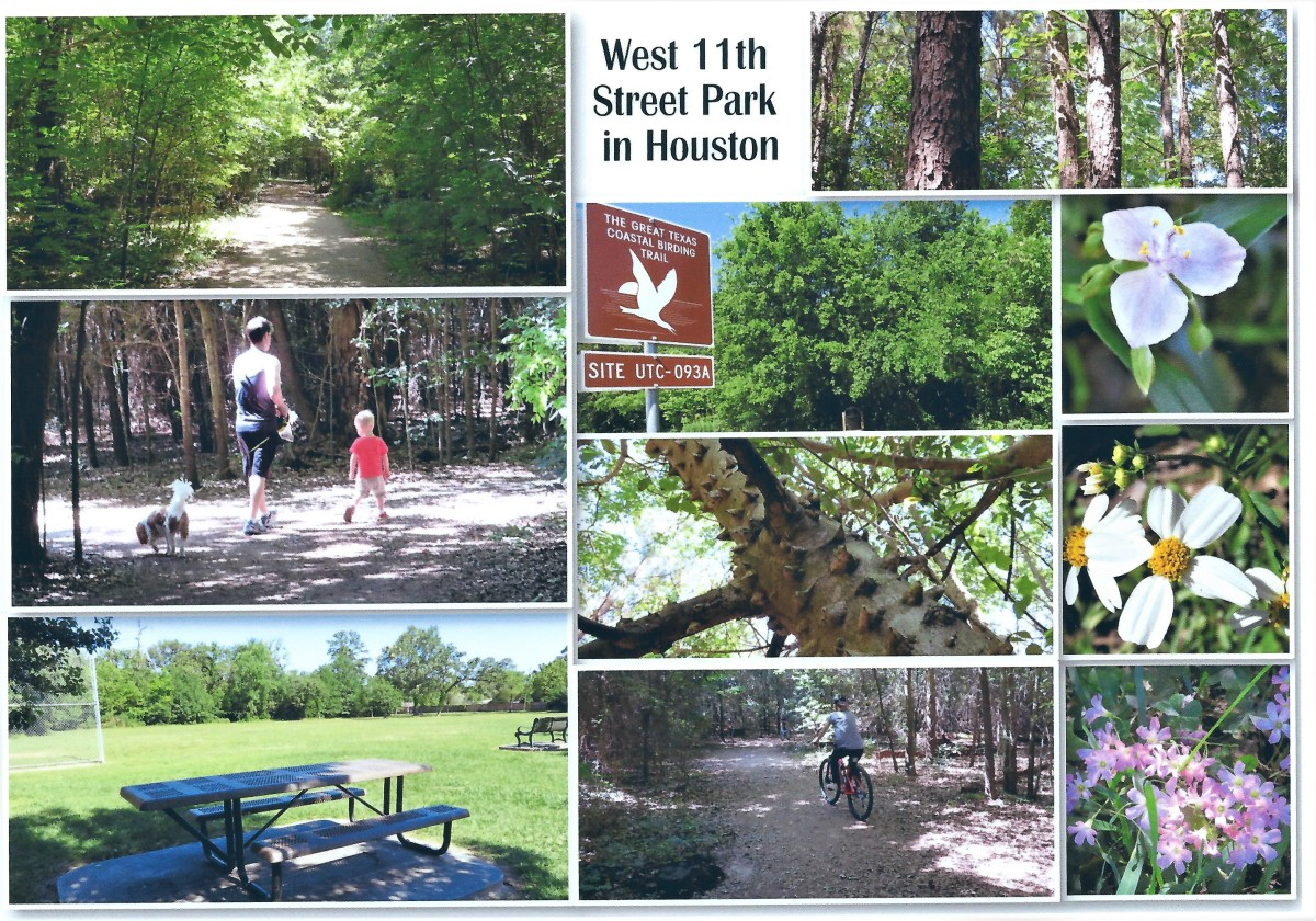 West 11th Street Park in Houston: Wilderness in the City