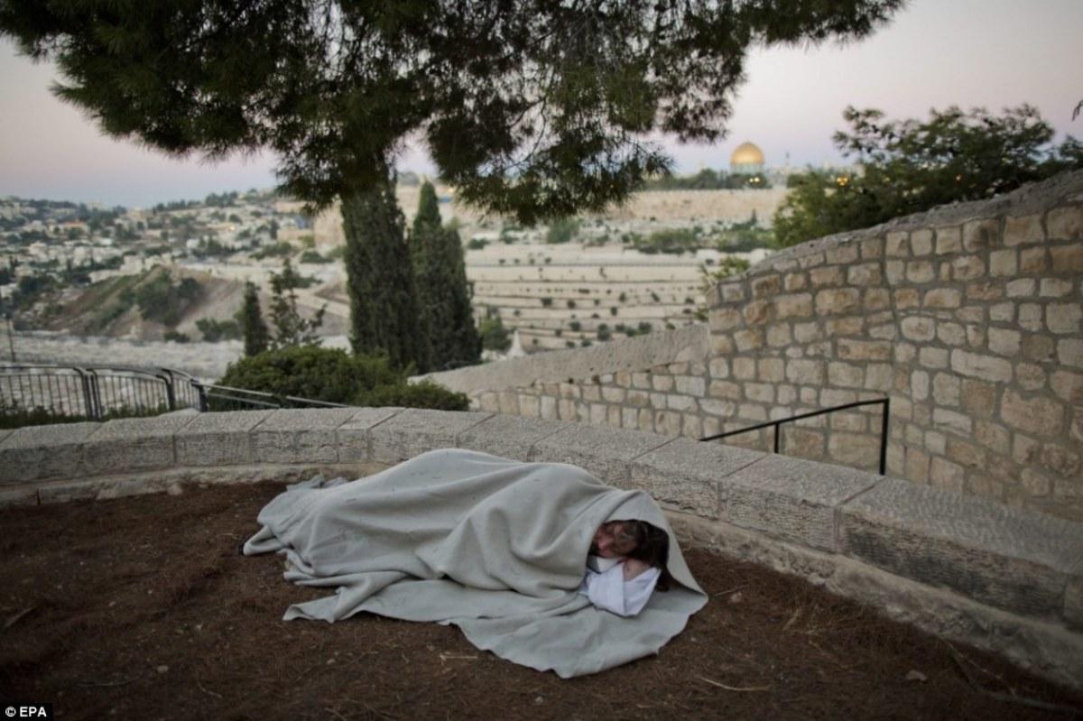 Carl Joseph aka The Jesus Guy sleeping under a tree in Jerusalem