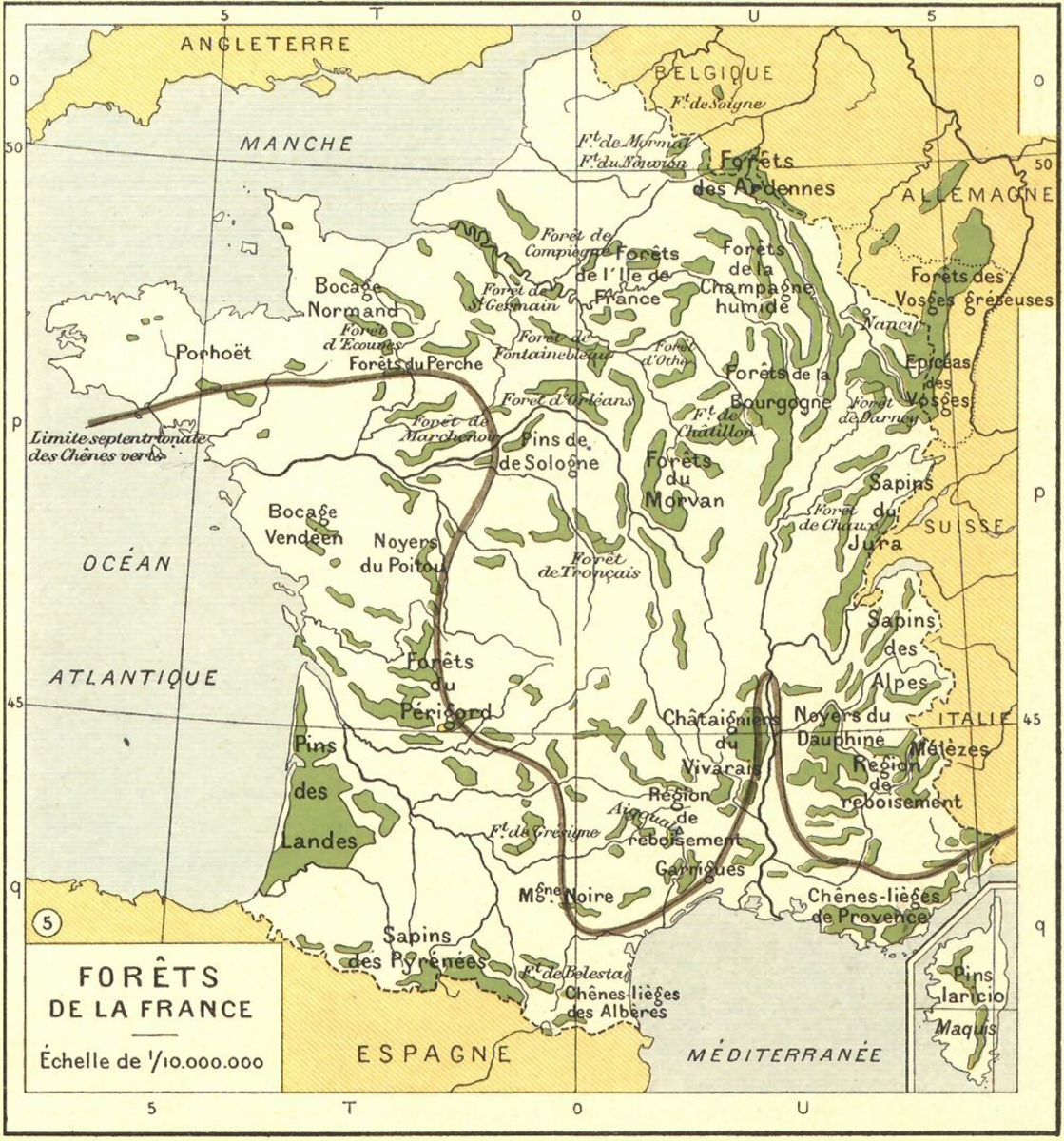 French forests, shown here during the early Third Republic