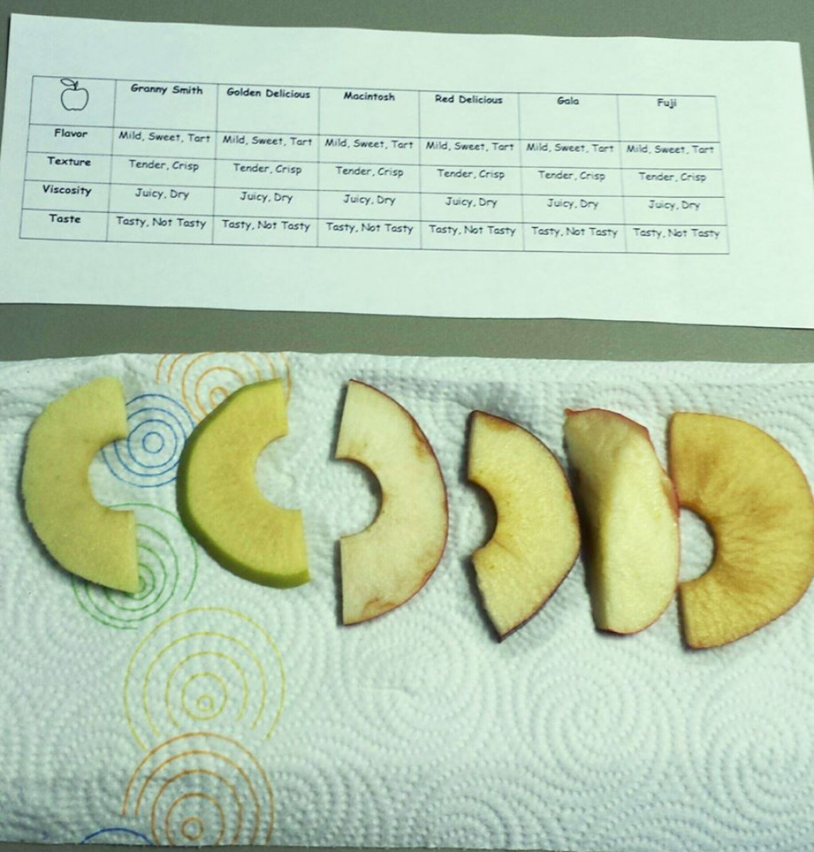 Washington Apple Tasting & Apple Pie activity we did during our geography morning basket time
